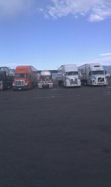 TruckerDesiree 16