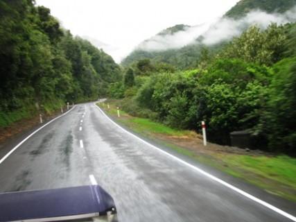 Vic H Waioeka Gorge 1 427x320
